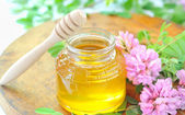 Jar full of honey and stick with acacia pink and white flowers — Stock Photo