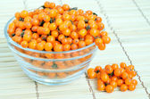 Sea-buckthorn berries in glass bowl — Stock Photo