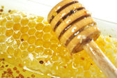 Honey with wood stick — Stockfoto