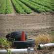 Environmental pollution - waste in field — Stock Photo