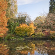English park in autumn — Stock fotografie