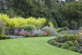Blooming English garden general view — Stock Photo