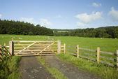 Farm gate, Lake District, UK — Stock Photo