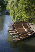 Cambridge boats — Stock Photo