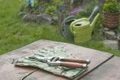 Сад Перчатки и кусачки в саду — Стоковое фото