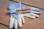 Garden gloves and clippers — Stock Photo