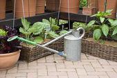 Gartenbau - gießkanne und blumentöpfe — Stockfoto