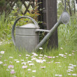 Metal watering can on lawn — Stock Photo