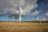 Wind turbines in Cornwall UK — Foto Stock