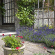Stock Photo: English garden patio