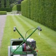 Lawnmower against of background of hedge in English garden — Stock Photo
