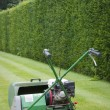 Lawnmower against of background of hedge — Stock Photo