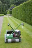Rasaerba contro dello sfondo della siepe nel giardino inglese — Foto Stock