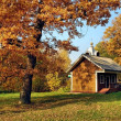 A small house in the autumn forest — Stock Photo #13640544