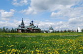 Russian landscape with dandelions — Stock Photo