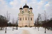 Cathedral of St. Catherine in Tsarskoye Selo (Pushkin) — Stock Photo