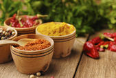 Four kinds of seasonings — Stok fotoğraf