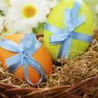 Colorful easter eggs in the basket — Stock Photo #19409823