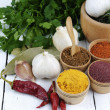 Different kinds of seasonings and herbs — Stock Photo #21697655