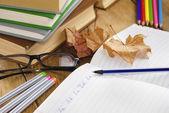 Il libro di testo con penna — Foto Stock