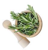 Rosemary bunch isolated — Stock Photo