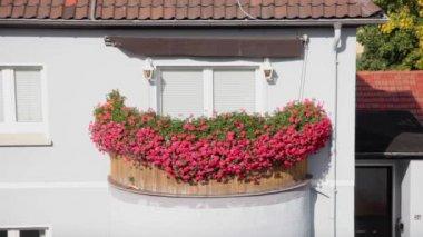 Balcony with plenty flowers — Stock Video