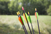 Arrows for the Bow — Stock Photo