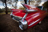 Red Thunderbird car — Stock Photo