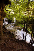 Beautiful natural waterfall — Stock Photo