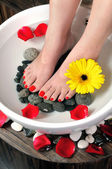 Foot spa with flowers in water as background — Stock Photo