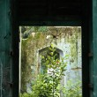 Abandoned old building window - Stock Photo