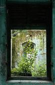 Abandoned old building window — Stock Photo
