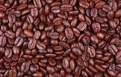 Coffee beans close up/ macro — Stock Photo
