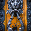 Decorative lion head knocker on a wooden door — Stock Photo