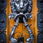 Decorative lion head knocker on a wooden door — Stock Photo #13646702