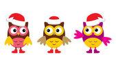 Owl in Christmas hats — Stock Vector