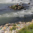 ������, ������: Polluted river