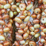 Drying onions — Stock Photo