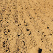 Stock Photo: Plowed land