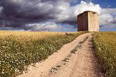 路径和塔 — 图库照片