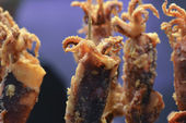 Fried squid — Stock Photo