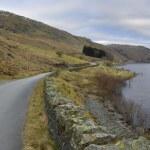 Road along the lake — Stock Photo #23089968