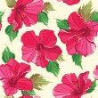 Stock Vector: Floral seamless pattern with hibiscus