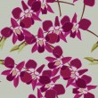 Floral seamless pattern with orchids - ベクター素材ストック
