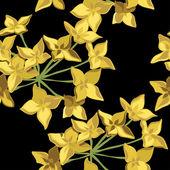 Motif floral sans soudure, dessin à main. — Vecteur