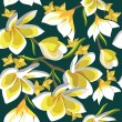 Floral seamless pattern with frangipani - Image vectorielle
