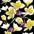 Floral seamless pattern with frangipani, hand-drawing. - Векторная иллюстрация