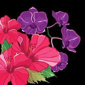 Magnifique motif floral d'hibiscus et les orchidées. — Vecteur