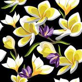 Floral pattern sans soudure de frangipaniers, dessin à main. — Vecteur