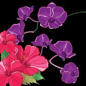 Magnifique motif floral avec les hibiscus et les orchidées, dessin à main. — Vecteur
